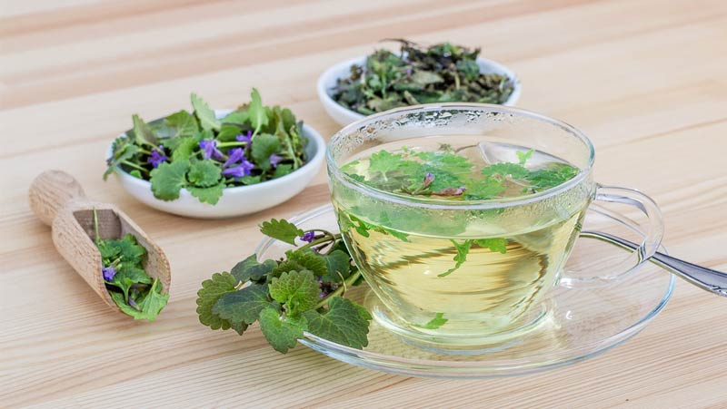 Apotheke Mauerbach Kosmetik - Tee